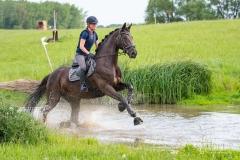 Pferdefreizeitpark-Eidertal