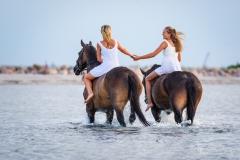 Holsteiner-Schwestern