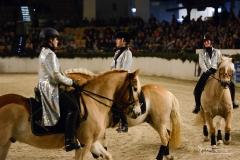 NMS Holstenhallen - Haflinger Freundeskreis Rahmenprogramm
